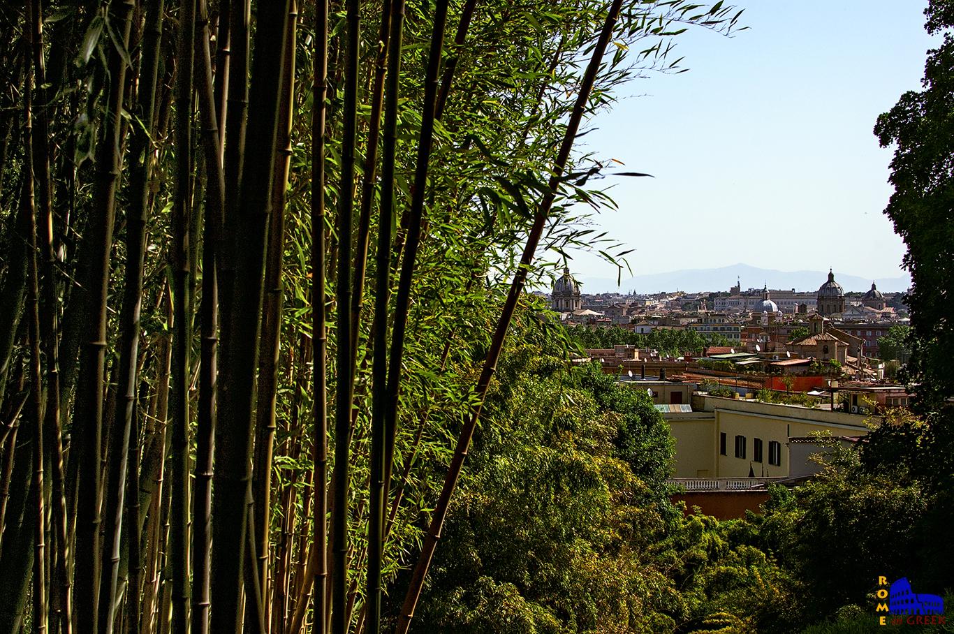 Θέα στην Ρώμη ανάμεσα από τα μπαμπού