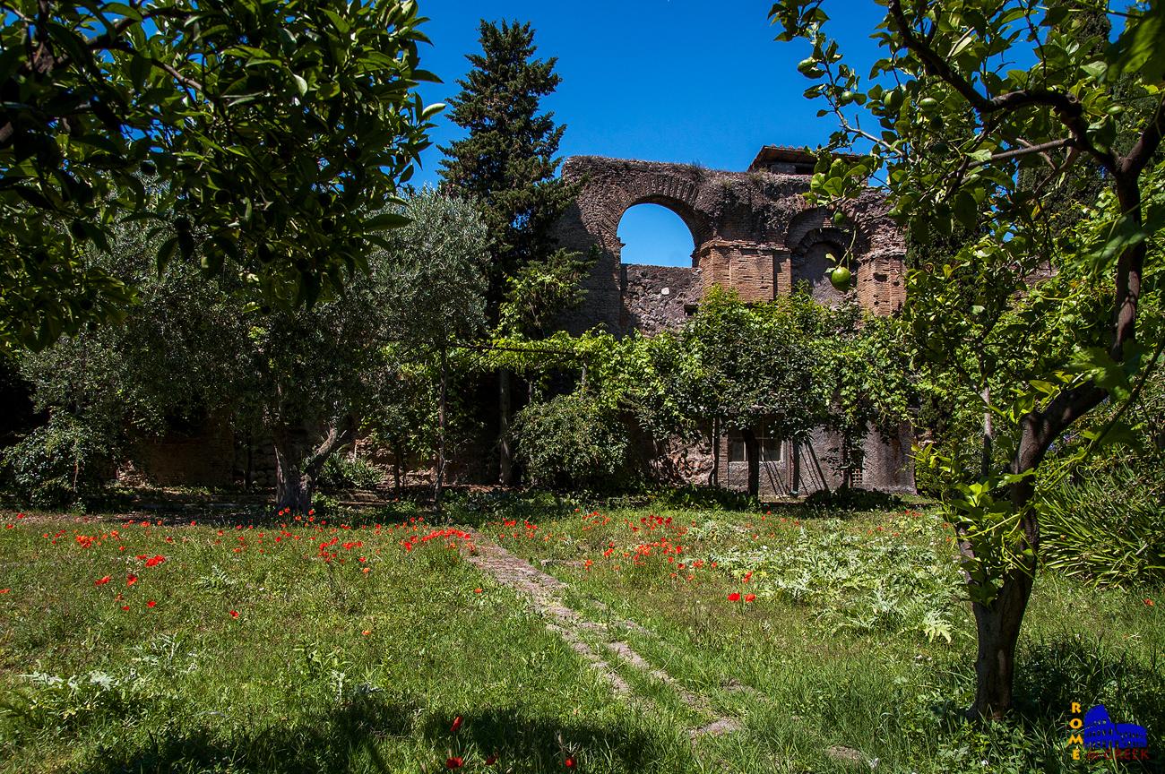 Τμήμα του κήπου με τον τοίχο του αμφιθεάτρου.